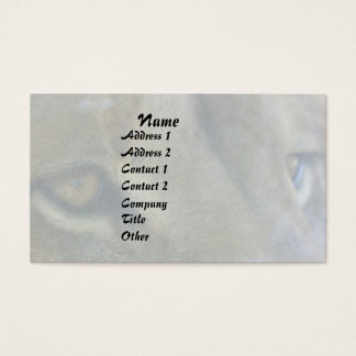 Löwe mustert Tier-tierische große Visitenkarte