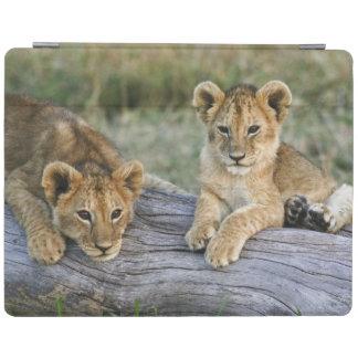 Löwejunge auf Klotz, Panthera Löwe, Masai Mara, 2 iPad Hülle