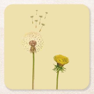 Löwenzahn, gelbe Blumen, Blowballs, Uhren Kartonuntersetzer Quadrat
