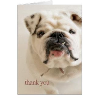 Loyale weiße Bulldogge danken Ihnen Karte