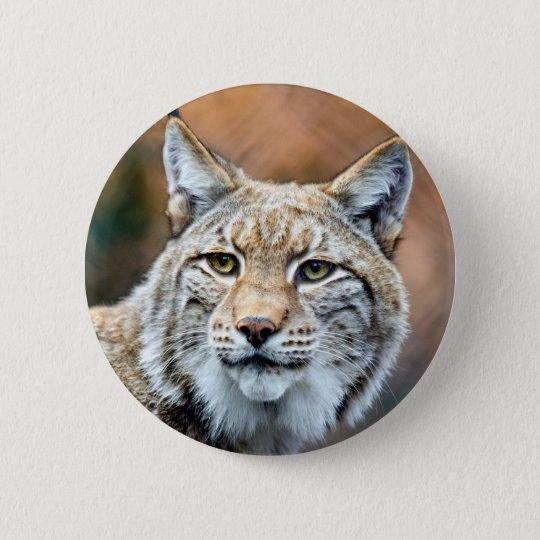 Luchs-Rotluchs-Tier-Fleischfresser-Katze Runder Button 5,7 Cm