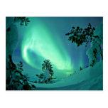 Lumières du nord à l'hiver cartes postales
