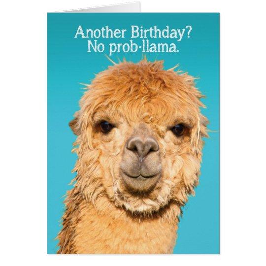 Lustig keine Problama Lama-Geburtstags-Klugheit Grußkarte