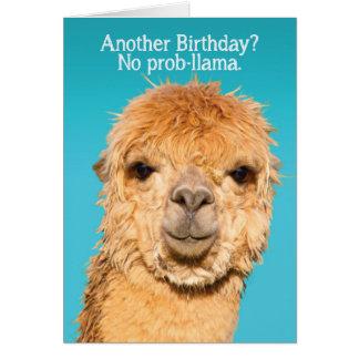 Lustig keine Problama Lama-Geburtstags-Klugheit Karte