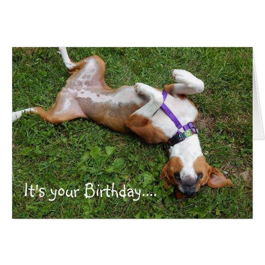 Lustige Beagle-Geburtstags-Karte Grußkarte