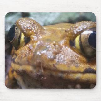 Lustige Brown-FroschMausunterlage Mousepad
