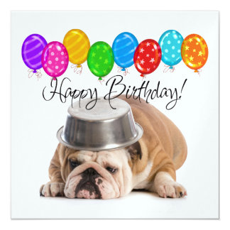 Lustige Bulldoggen-Geburtstags-Einladung - SRF Quadratische 13,3 Cm Einladungskarte