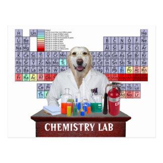 Lustige Chemie-Lehrer-Postkarte mit Labrador Postkarte