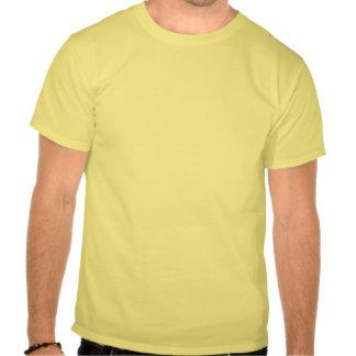 Lustige DNS: Stoppen Sie, mich zu kopieren Hemden