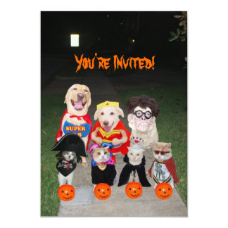 Lustige Hunde u. Katzen Halloween Ankündigungskarten
