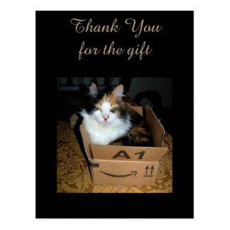 Lustige Kaliko-Katze im Kasten danken Ihnen Postkarte
