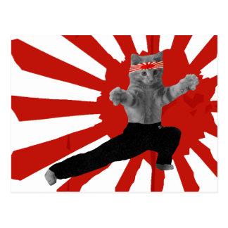Lustige Karate-Kätzchengeschenke Postkarten