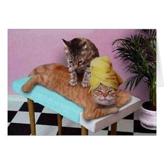 Lustige Katzen-Massage Karte