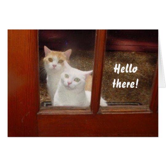 Lustige Katzen Notecard Mitteilungskarte