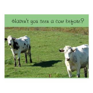 """Lustige Postkarte, """"haben nicht Sie eine Kuh Postkarte"""