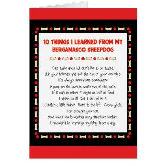 Lustige Sachen I gelernt von meinem Bergamasco Karte