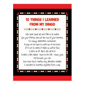 Lustige Sachen I gelernt von meinem Dingo Postkarte