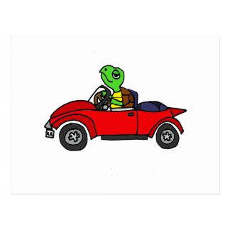 Lustige Schildkröte, die rotes konvertierbares Postkarte
