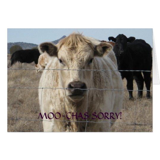 Lustige Schwarz-weiße Kuh-Entschuldigung MOO - Grußkarte