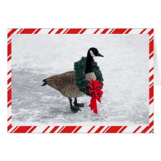 Lustige Weihnachtsgans mit Kranz Karte