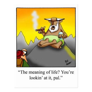 Lustige Zigarren-kluger Mann-Cartoon-Geschenke! Postkarte