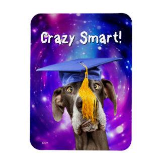 Lustiger Abschluss-Hundetragender Hut Magnet