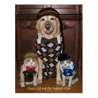 Lustiger Hund Labrador u Katzen in den Rauten-Str