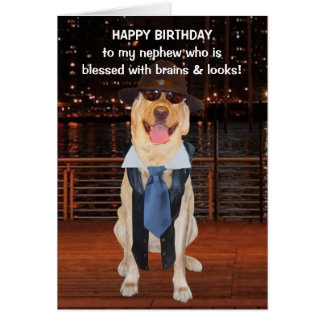 Lustiger Hunde-/Labrador-Geburtstag für Neffeen Karte