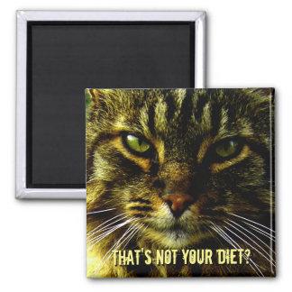Lustiger Katzen-Diät-Schutz Quadratischer Magnet