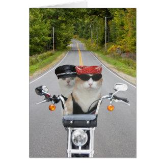 Lustiger Radfahrer-Katzen-Valentinsgruß/Jahrestag Karte