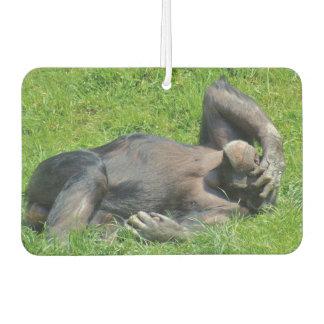 Lustiger Schimpanse Autolufterfrischer