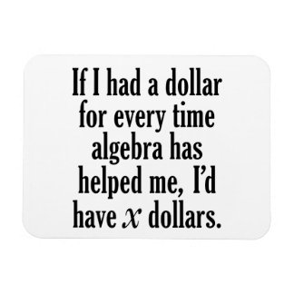 Lustiges Mathe-/Algebra-Zitat - ich würde x-Dollar Magnet