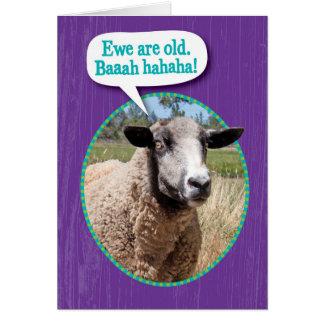 Lustiges Mutterschaf-alter Schaf-Schuss-Geburtstag Karte