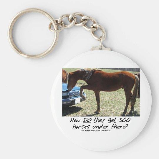 Lustiges Pferd: Wie erhalten sie 300 darunter Schlüsselanhänger