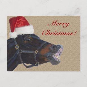 Lustiges Pony-frohe Weihnachten