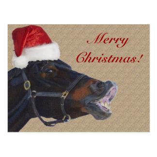 Lustiges Pony-frohe Weihnachten Postkarte