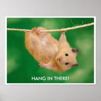 Lustiges u. niedliches Hamster-Plakat Poster