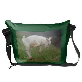 Lustiges Ziegen-Baby-weiße Ziege, die in Weide Kuriertasche