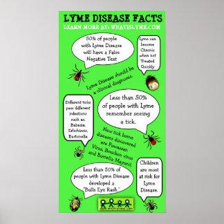 Lyme-Borreliose-Bewusstseins-pädagogisches Poster