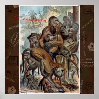 Macaques für verantwortliche Reise Poster
