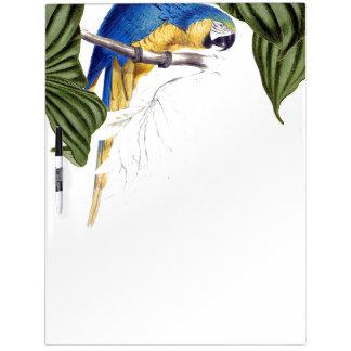 Macaw-Papageien-Vogel-wild lebende Tiere verlassen Trockenlöschtafel