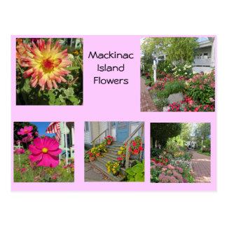 Mackinac Insel-Blumen Postkarte