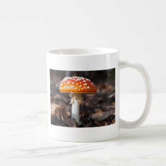 Magischer Pilz Tasse