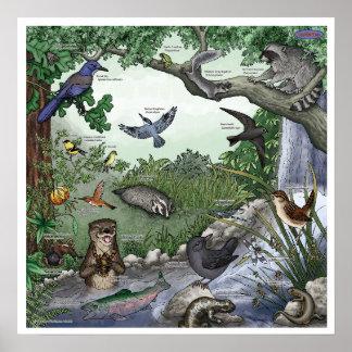 """Magisches"""" Doppelplakat """"des Otters -- mit Grenze Poster"""