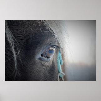 Magisches Pferd Poster