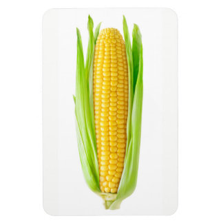 Magnet Flexible Épi de blé