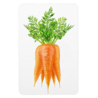 Magnet Flexible Groupe de carottes