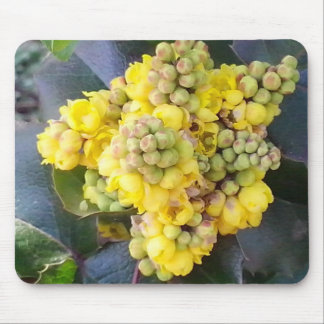 Mahonie Oregon Grape Mousepad