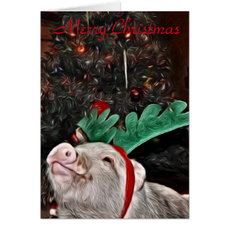 Mai der Geist von Weihnachten, Schwein-Gruß-Karte Karte