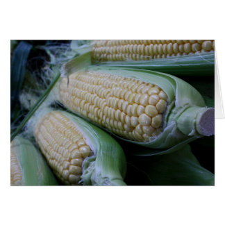 Maiskolben-Nahrungsmittelphotographie-Gruß-Karte Grußkarte